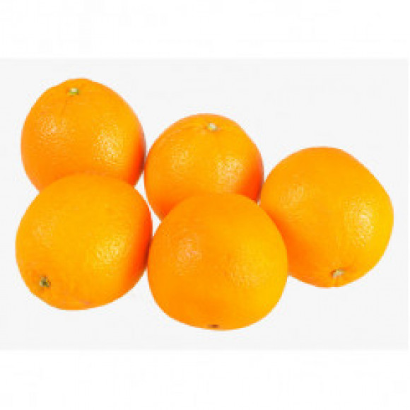 Orange Minimum 5 in Pack